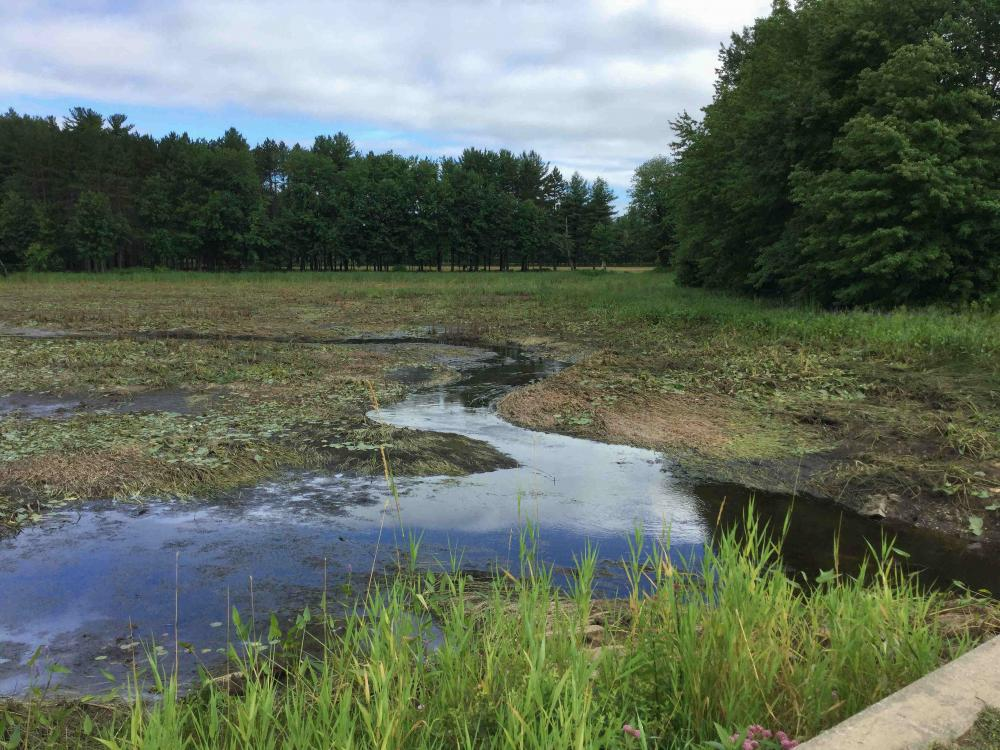 Pond Dredging in NH